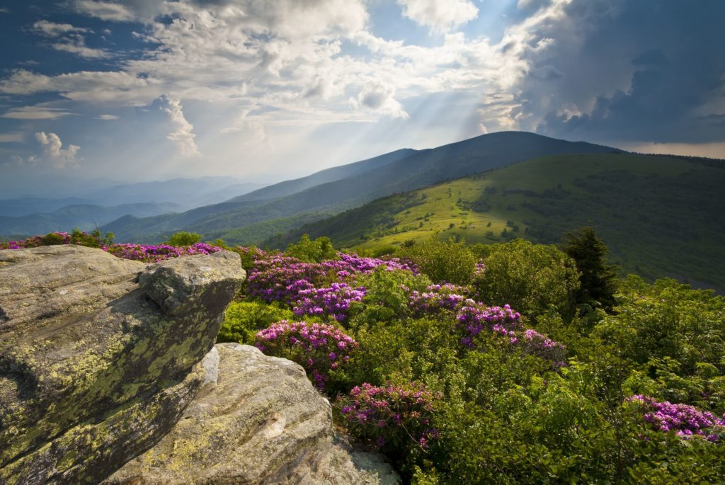 appalachian trail roan mountains